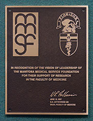 Photo of MMSF Medicine Plaque.